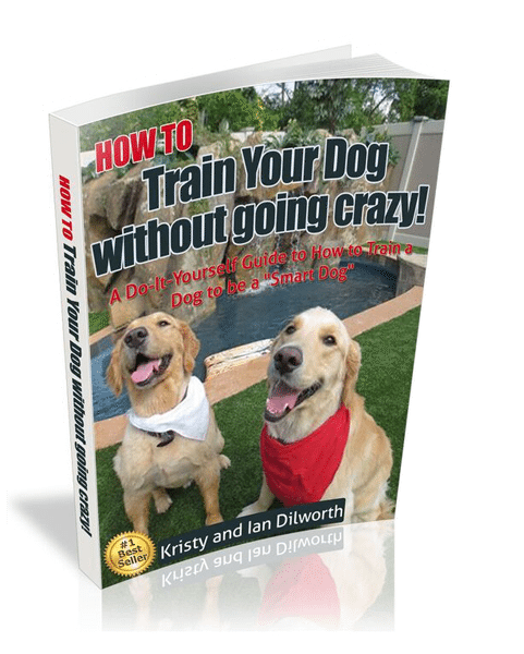"HOW TO Train Your Dog without going crazy!: A Do-it-Yourself Guide to How to Train a Dog to be a ""Smart Dog"""
